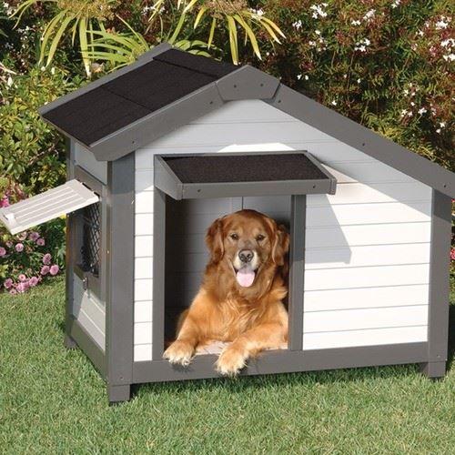 Kutyaház